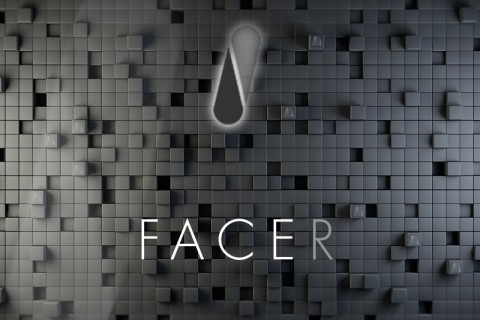 FACER <small>(Fashion City Economic Rating)</small>